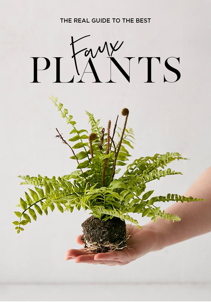 The Real Guide the The Best Faux Plants